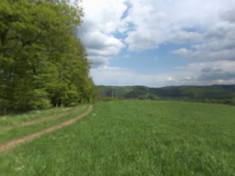 Panorama der Umgebung vom Hotel Dreimäderlhaus in der Eifel, Sommer 4